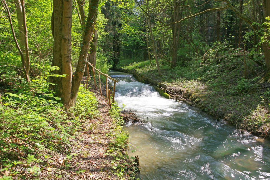 Siebentischwald